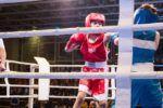 В «Артеке» дан старт первенству по боксу